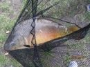 Tavaszi horgász weekend - 2012 - Lóga-tó -Minitali